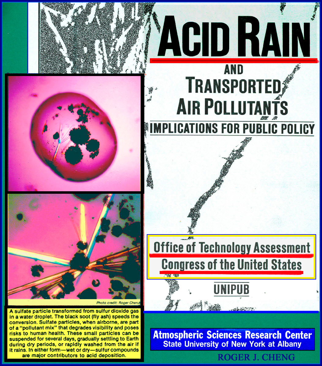 acid rain research article Learn the cause and effect of acid rain read environmental news articles on how acid rain takes nutrients from the soil, leads to stunted forests and more.